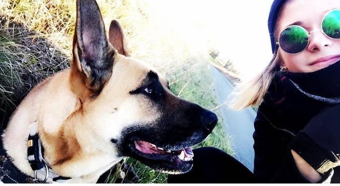 POUR CHIEN, dog sitter à poitiers