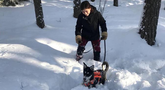 Nye hyggelige eventyr og masse kos🐾, hundepassere i Oslo, Norge