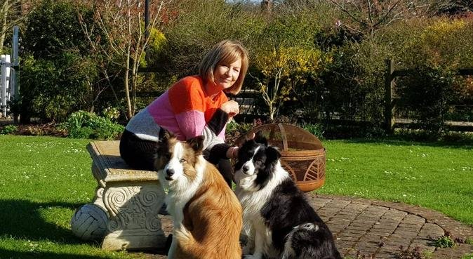 Home from home - Your dog won't want to leave!, dog sitter in Hoddesdon, Hertfordshire
