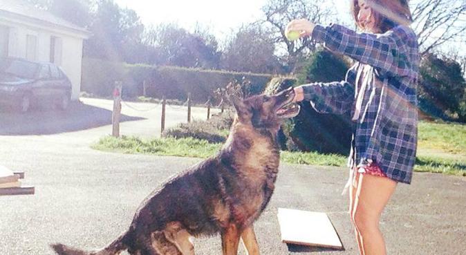 Le paradis pour vos toutous est chez moi !, dog sitter à Angers