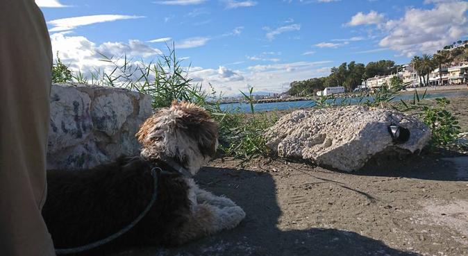 La casita de la playa, cuidados con cariño y juego, canguro en Málaga