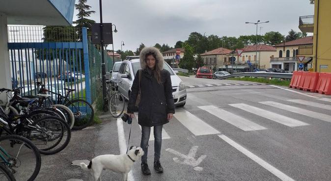 Coccole,passeggiate e tanta allegra compagnia, dog sitter a Albignasego, PD, Italia