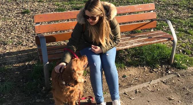 Passeggiate in riva all'Arno, giochi e coccole!, dog sitter a Firenze