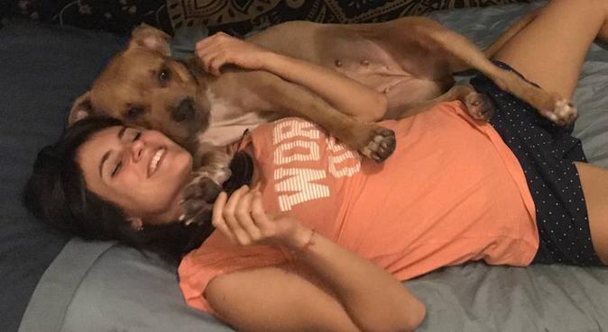 Giochi, coccole e tanto amore per i vostri amici!, dog sitter a Firenze