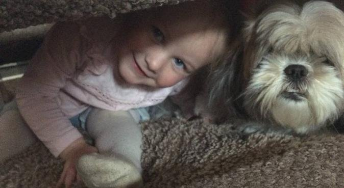 Pooches Paradise, dog sitter in Barnsley, UK