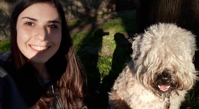 Qua la zampa!🐾 tante coccole e divertimento, dog sitter a Pisa