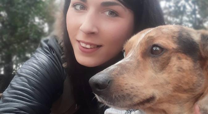 Garde de chiens : du sérieux et des câlins., dog sitter à TOULON