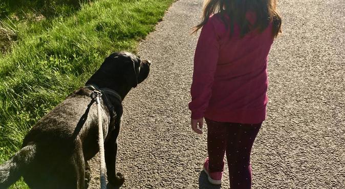 En glad och hjälpsam DogBuddy i Alingsås, hundvakt nära Alingsås, Sverige