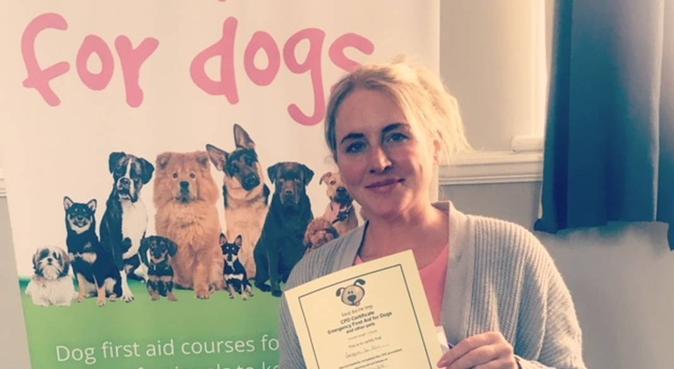 Banstead Dog Walking Boarding & Daycare, dog sitter in Surrey
