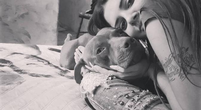 Il paradiso delle codine felici, dog sitter a Catania