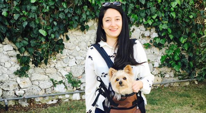 DogWalk, dog sitter à Boulogne-billancourt