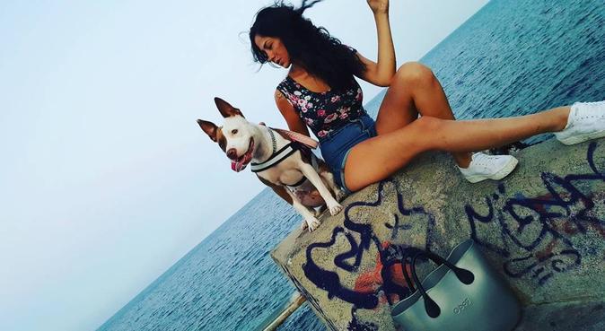 Compagnia e coccole assicurate da me e la mia cucc, dog sitter a Aci Castello