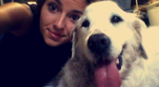 Offre des vacances à vos animaux 🐶, dog sitter à Talence, France