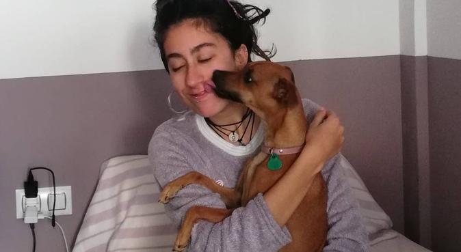 Tu perro mi hogar, canguro en Granada