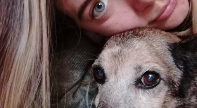 Divertimento,coccole e passeggiate assicurate!, dog sitter a Firenze