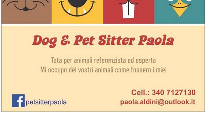 Tata per animali referenziata ed esperta, dog sitter a Formigine