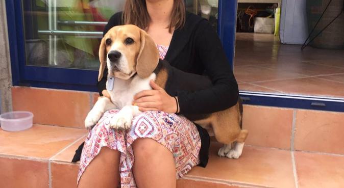 Une amoureuse de nos amis à quatres pattes  🐾, dog sitter à Montpellier