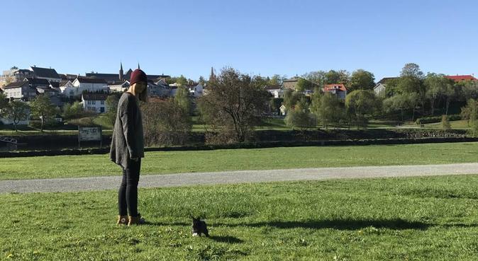 To lykkelige samboere som savner å ha hund i huset, hundepassere i Trondheim, Norge