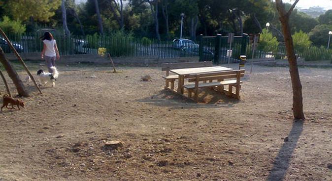 Tante passeggiate e tanto divertimento!, dog sitter a Cagliari