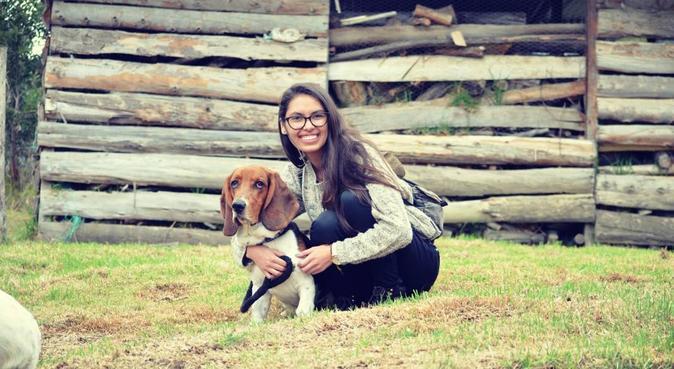 Le paradis des chiens à deux pas des Rives du Lez, dog sitter à Montpellier
