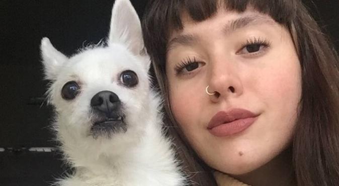 Lo amerò tanto proprio come fai tu., dog sitter a Palermo, PA, Italia