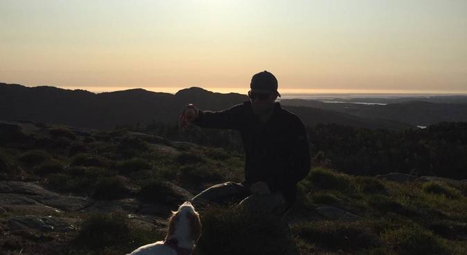 Flokken søker firbeint turfølge, hundepassere i Nesttun