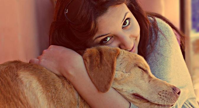 Garde avec amour et attention !, dog sitter à Toulouse