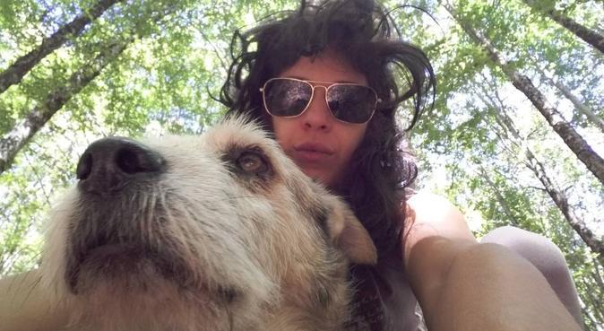tutti a spasso per essere felici!!!!, dog sitter a Bologna