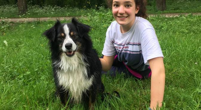 Ballades et câlins pour nos amis les chiens., dog sitter à Fontainebleau