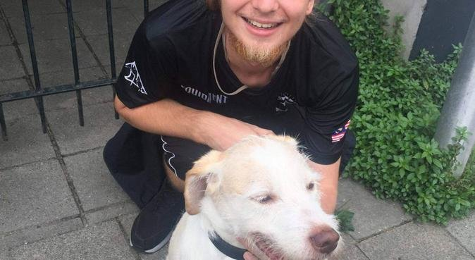 Een liefdevolle en aandachtige oppas in Utrecht, hondenoppas in Utrecht