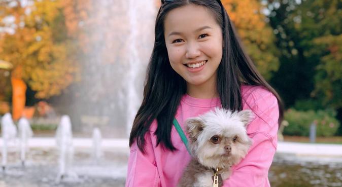 Lekfull hundpassning med hundsällskap!, hundvakt nära Huddinge