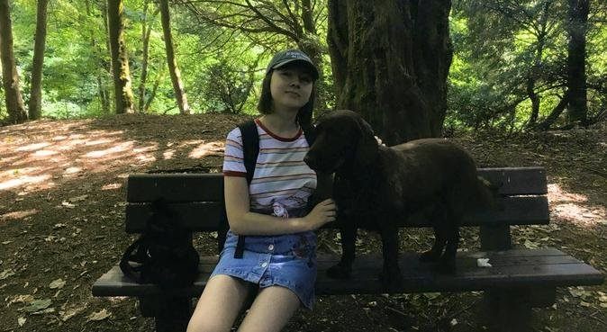 Walks and Cuddles in Paisley, dog sitter in Paisley