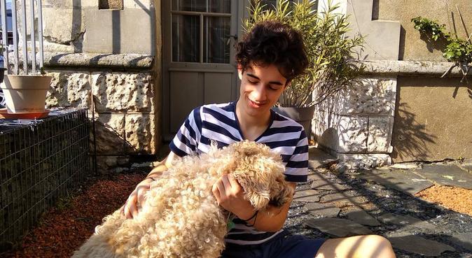 Le chien, le meilleur ami de l'H̶o̶m̶m̶e̶ Edouard, dog sitter à La Daguenière, France