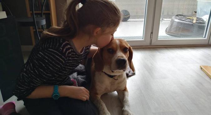 Plein d'amour à partager, dog sitter à Vaux sur seine