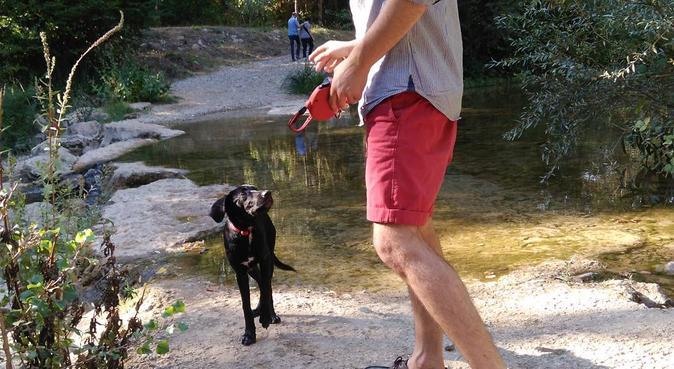 Hébergement pour chien à la Torse, dog sitter à Aix-en-provence