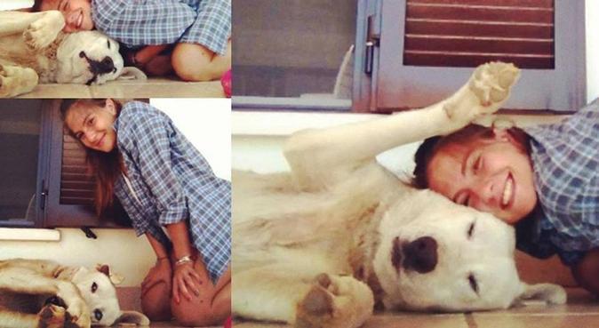 Vedendo l'uomo debole, gli fu dato un cane!, dog sitter a Napoli