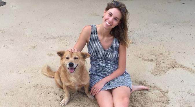 liebevolle Hundesitterin mit Erfahrung sucht..., Hundesitter in Frankfurt am Main