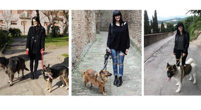 Sono Giulia e mi occuperò volentieri del tuo cane!, dog sitter a Pescara, PE, Italia