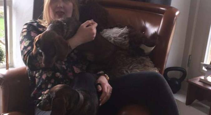 Blije student die super veel van alle honden houd, hondenoppas in IJsselstein, Nederland