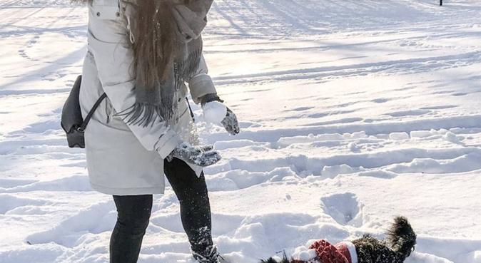 Elsker hunder og gode turer!, hundepassere i Oslo, Norge