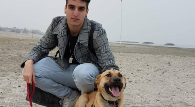 passeggiate a non finire, dog sitter a Santarcangelo di Romagna, RN, Italia