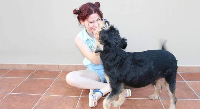 Affetto, attenzioni, coccole, divertimento, dog sitter a Genova