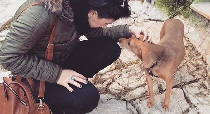 Coccole&passeggiate con Eleonora, dog sitter a Palermo
