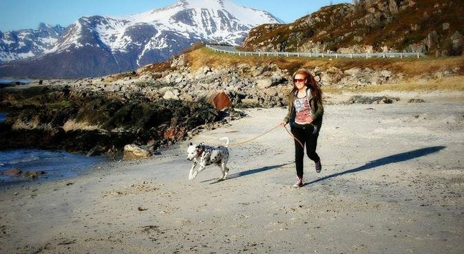 Livet er fint, men hunder gjør det bedre!❤️🐶, hundepassere i Morvik