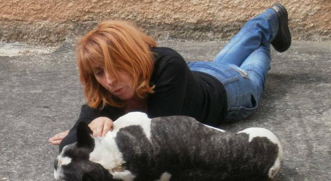 Un moment de sérénité sur Castres, dog sitter à Castres