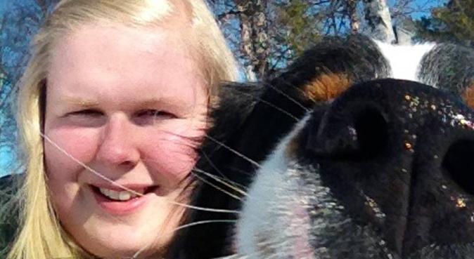 Tur i godt selskap er aldri feil!, hundepassere i Fyllingsdalen