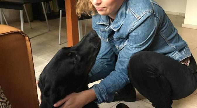 Hondenuitlaatster, hondenoppas in Utrecht, Nederland