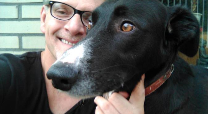 uitlaatservice den haag 100% veilig, hondenoppas in 's-Gravenhage
