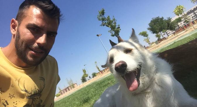 Paseador de perros rivas, canguro en Madrid