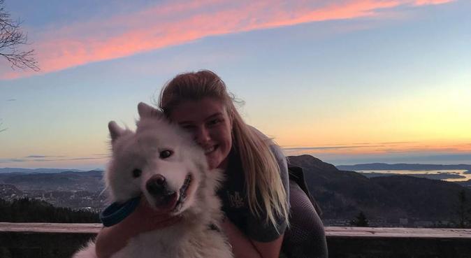 Å gå på tur uten hund, er en tur uten grunn!, hundepassere i Trondheim